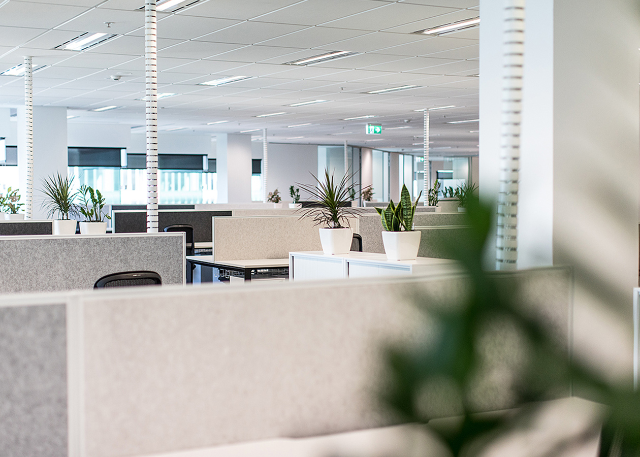 Subsea 7 Office Fitout 1